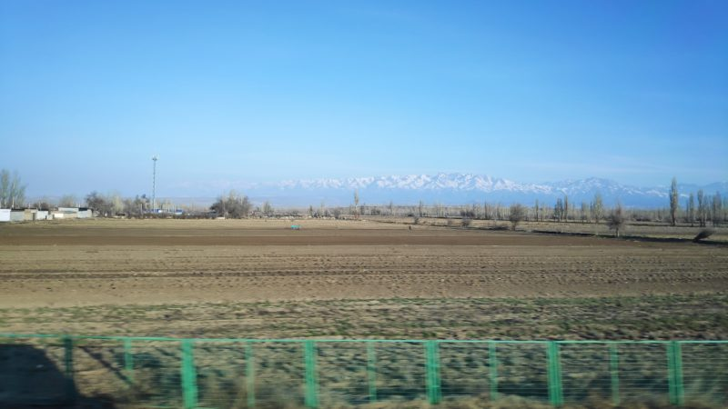 乾燥した畑