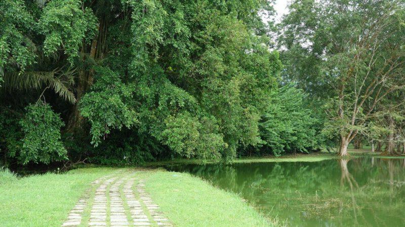 タイピンの公園