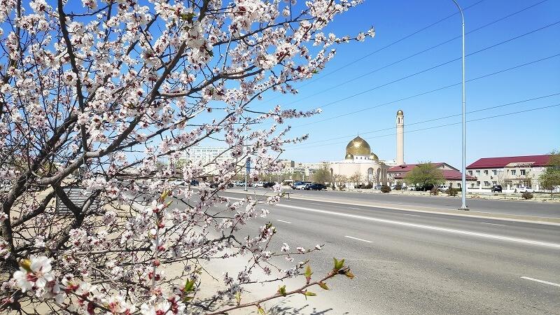 カザフスタン、アクタウの桜とモスク